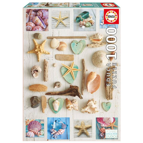 Puzzle Collage los coquillages