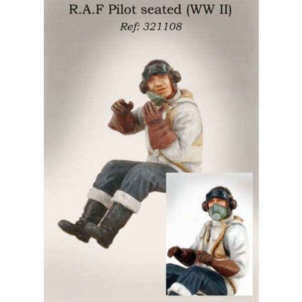 RAF pilot seated in aircraft (WWII)