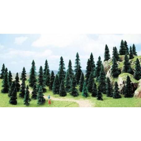 50 árboles variados